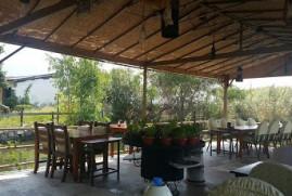 Gulbasi Restaurant